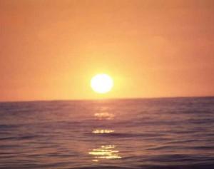Sonne19